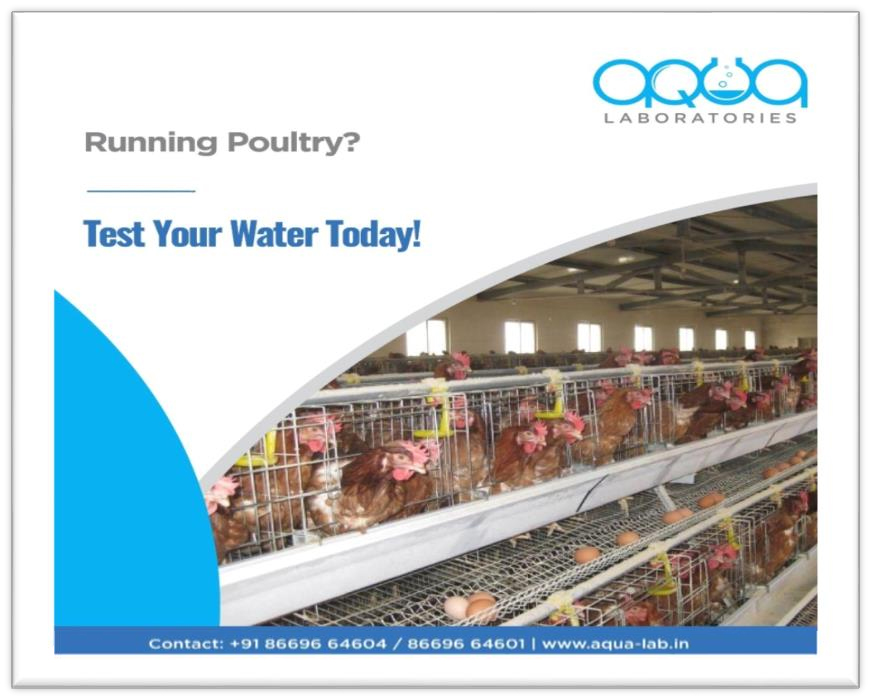 water-testing-lab-services-for-poultry